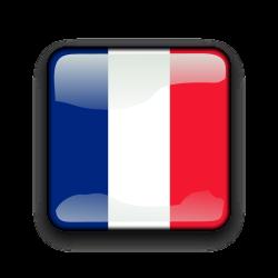 franciabanderaicono